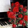 Роза Piano (Пиано)