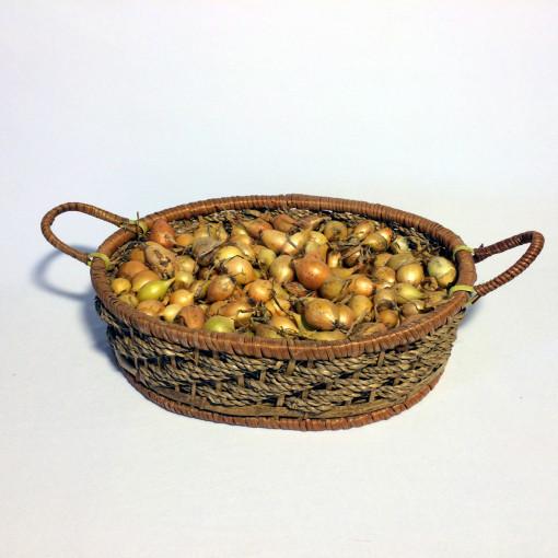 Лук-севок  Стурон  (средний 14-21 мм) 0,5 кг