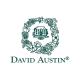 Купить настоящие лицензионные розы Дэвида Остина с доставкой по всей России.